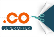 .CO domains offer